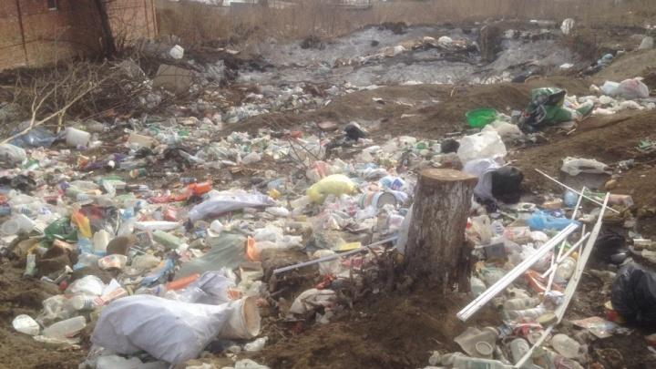 «Обнесли забором и забыли о людях»: в Николаевку на свалку свозят машины мусора и трупы животных