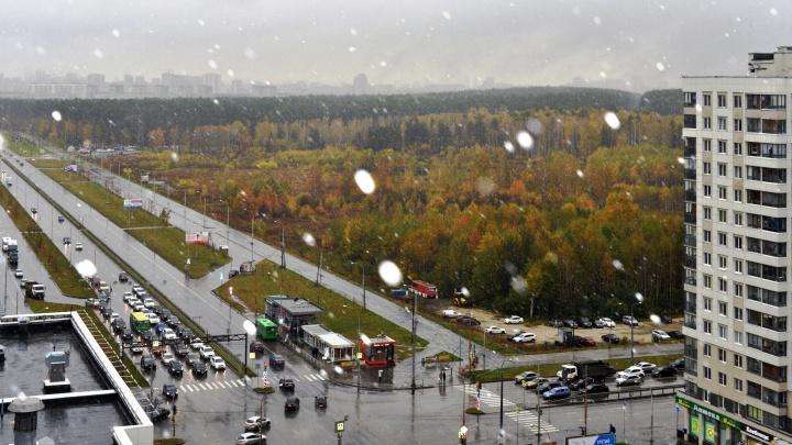 Началась зима: в Екатеринбурге выпал первый снег