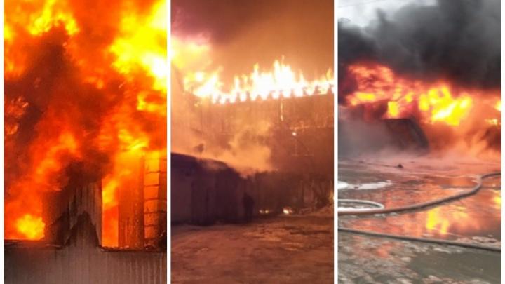 Сами виноваты? Почему в Екатеринбурге стало так много крупных пожаров