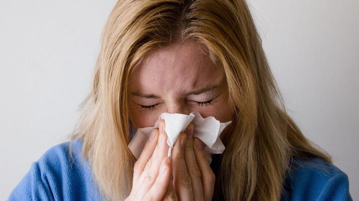 Как не разболеться: памятка по профилактике гриппа и ОРВИ для взрослых и детей