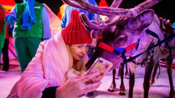 Селфи с оленем и рэп Деда Мороза: фоторепортаж с открытия снежного городка в центре Новосибирска