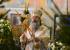 «Как сто лет назад пролилась кровь»:митрополит сравнил акции в сквере с расстрелом царя