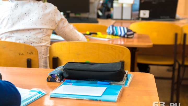 На приобретение дневников самарским школьникам потратят 24 млн рублей из областного бюджета