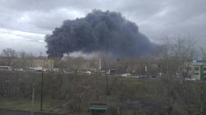 Ученый усомнился в выводах чиновников о безвредности для экологии пожара на «Бирюсе»