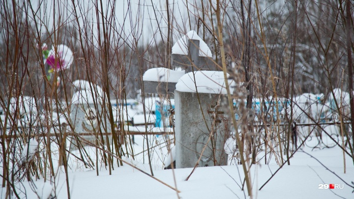 «Отсутствуют захоронения усопших»: чиновники Коноши не нашли могил на участке, где будет школа