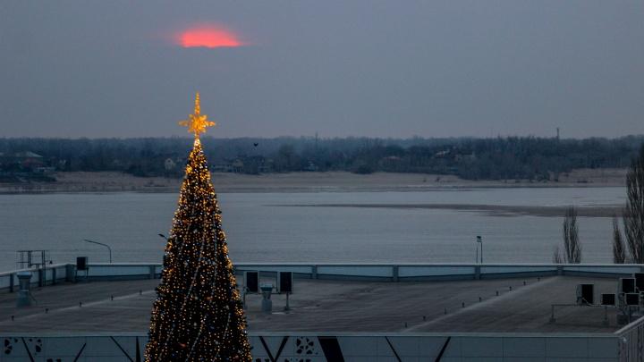 «Жаль, что снега пока нет»: волгоградский фотограф снял новогодние елки в центре Волгограда