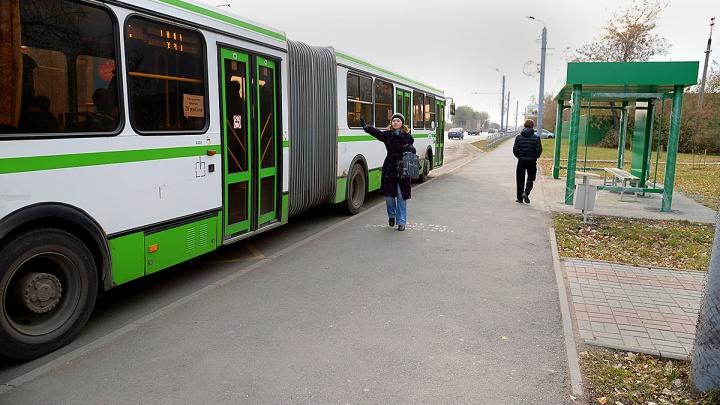 В день выборов в челябинских автобусах (не во всех) сделают бесплатным проезд