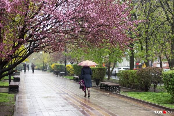 Ростовчанам снова придется достать плащи и зонтики