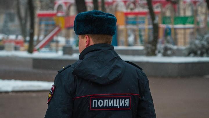 Покупали, а потом отменяли: на Дону задержали интернет-аферистов