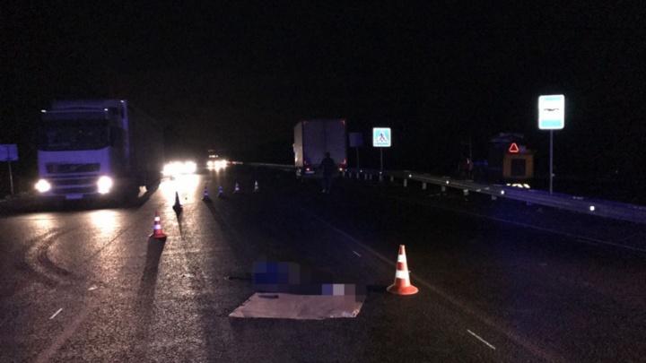 На башкирской трассе грузовик сбил уфимку-пешехода