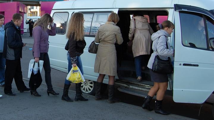 Бардак, аварии, проверки: новосибирцы не могут дождаться популярную маршрутку