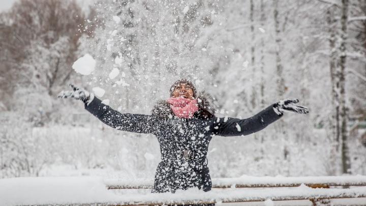 Само не растает: в Новосибирскую область идут затяжные снегопады