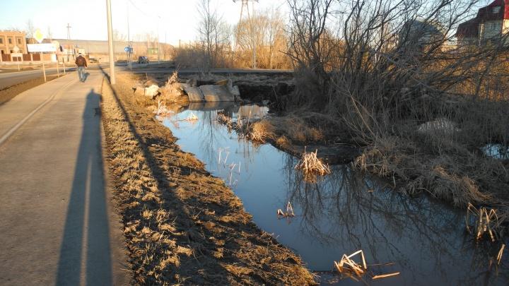 Деревню Зайкова топит несколько лет. В администрации говорят, что на систему водоотведения нет денег