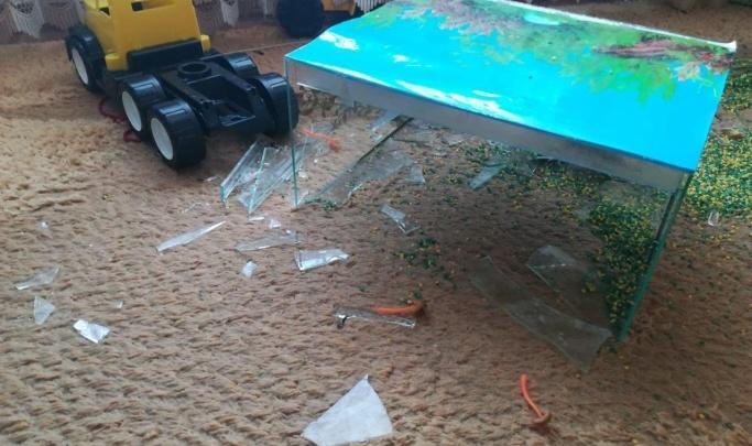 Дело о падении аквариума на маленькую девочку в частном детском саду дошло до суда