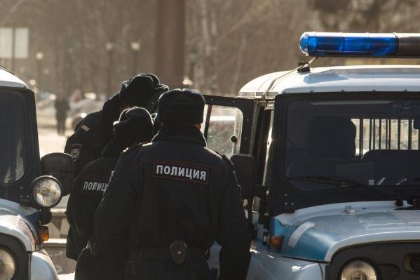 СК доложил, что начал проверки в отношении новосибирца с собакой и полицейского