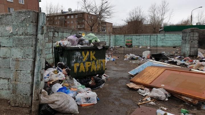 На контейнерных площадках левобережной зоны Красноярска наблюдается нехватка мусорных баков