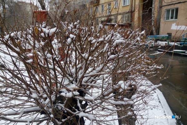 Погода снова расщедрилась на обильные осадки. На этот раз преимущественно в виде снега.
