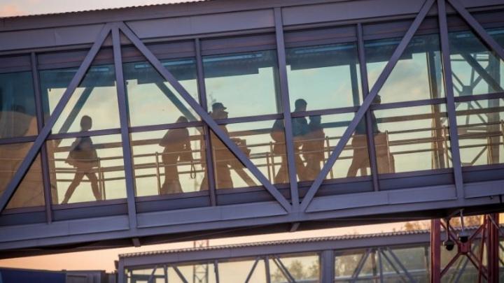 В Толмачёво задержали вылет рейса в Краснодар на 19 часов из-за отсутствия самолета