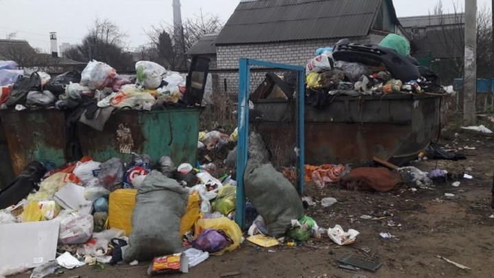 К 3% не добрались: «Управление отходами» купит вездеход собирать мусор труднодоступных волгоградцев