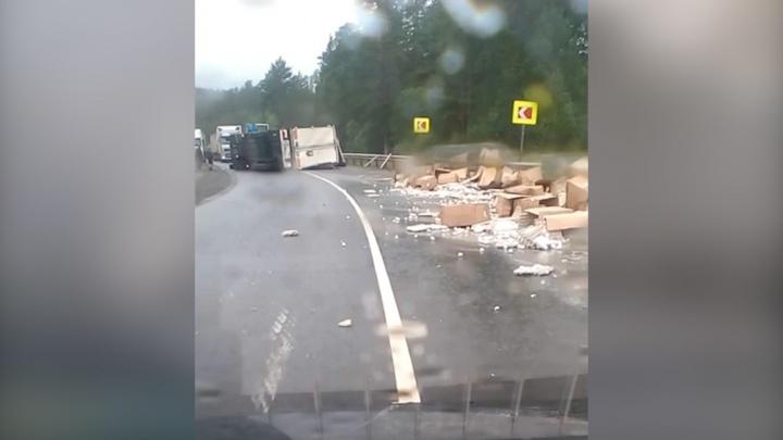 Фура набок, яйца всмятку: опрокинувшийся грузовик парализовал движение на трассе М-5