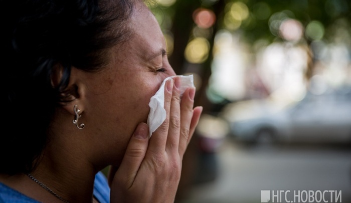 Новосибирцы массово скупают лекарства от аллергии