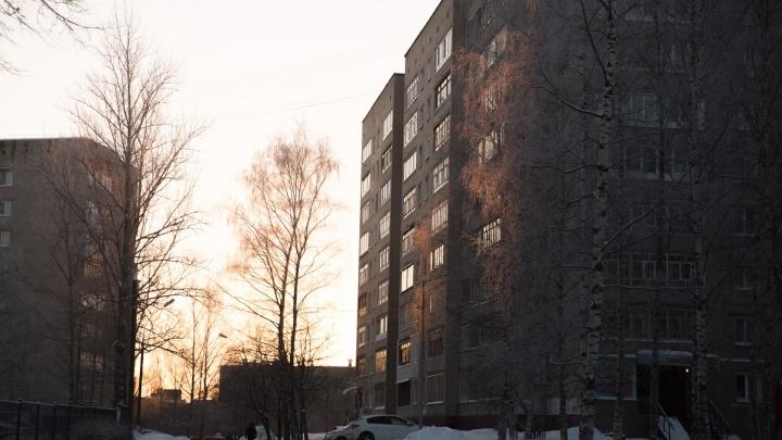Стоял и снимал штаны: в Ярославской области задержали эксгибициониста, развращавшего школьницу
