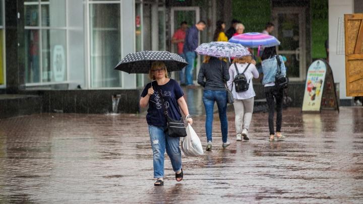 Осень близко: в Новосибирск надолго пришли дожди