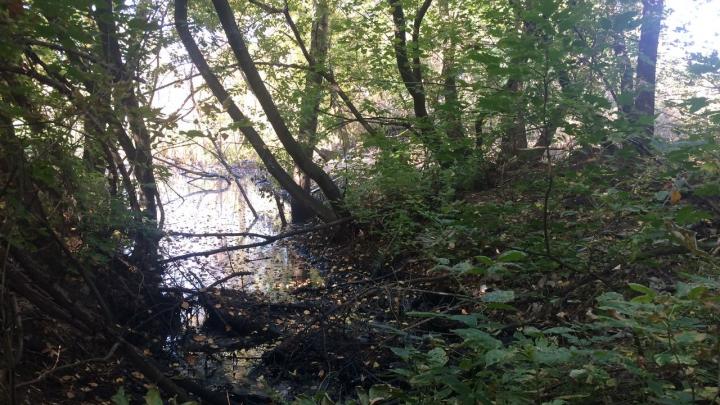 В Уфе около железной дороги обнаружили мазутное озеро