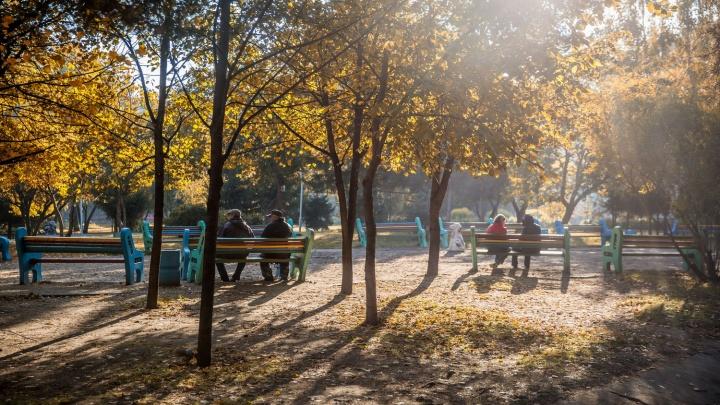 Дожди взяли паузу: в Новосибирск придёт потепление