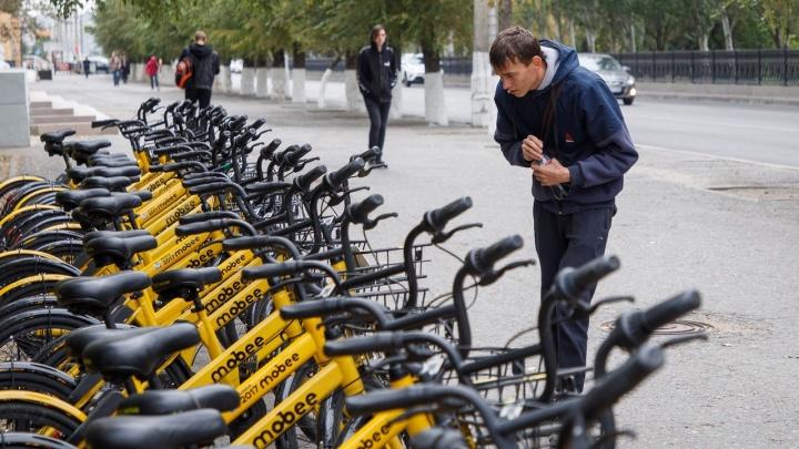 Инициатор велошеринга: «Волгоградцы злые, потому что велосипеда не было»