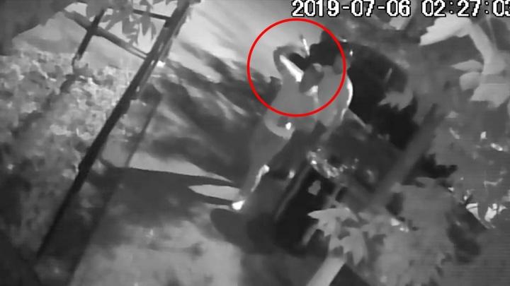 Метнул не целясь: видео нападения на туристку из Чехии у бара на улице Романова