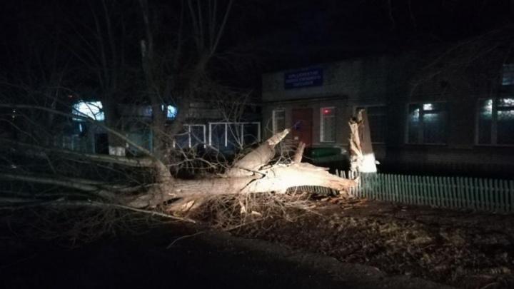 Сорванные крыши и упавшие деревья: последствия шквала в Уфе