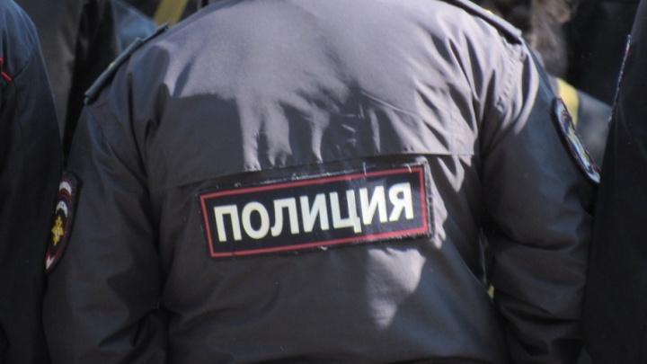 Дружинники, Росгвардия, полиция и частные агентства будут охранять курганцев в Новый год