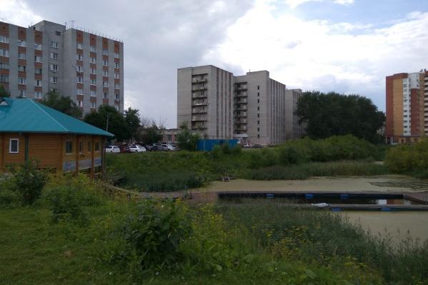 Студенческий пруд, где утонула 35-летняя беременная женщина