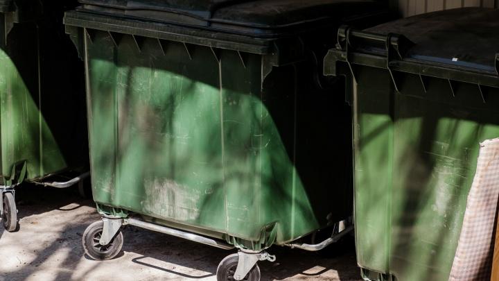 В Пермском крае хотят отменить плату за вывоз мусора для многодетных семей до конца 2022 года