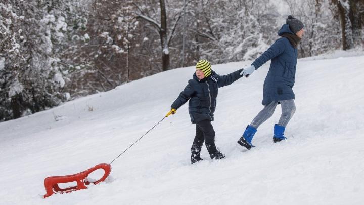 Курс на тепло: смотрим снимки уходящей волгоградской зимы