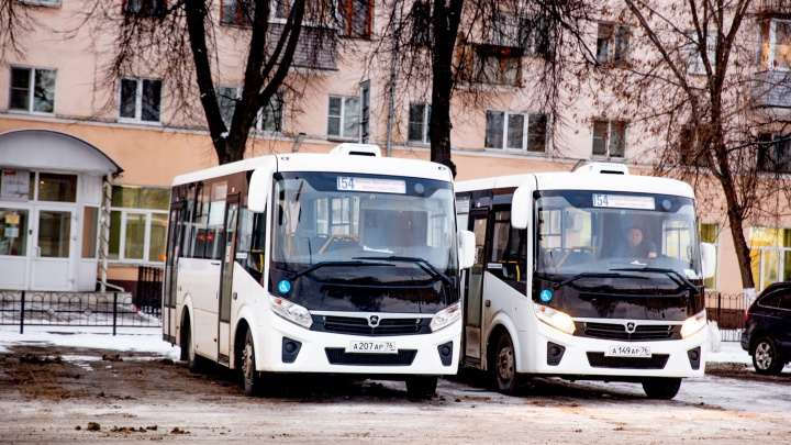 Денег не надо: ездить на автобусах по Ярославской области стало можно по безналу