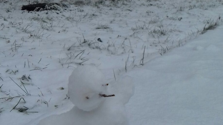 После сильного снегопада новосибирцы налепили снеговиков по всему городу