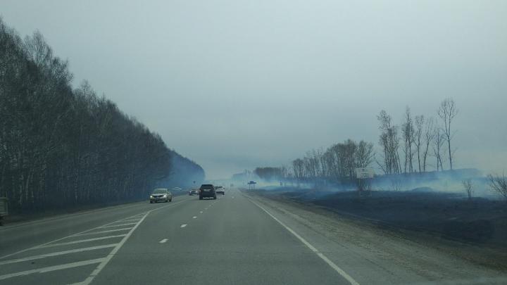 Спасателипоймали сотню поджигателей травы