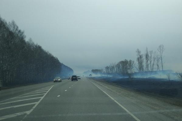 Горящая трава осложняла видимость на трассах под Новосибирском. На фото — дым на трассе Р256 «Чуйский тракт» около Искитима