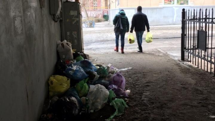 Убирают только к приезду Медведева: под Комсомольским мостом Волгограда воскресла жуткая свалка