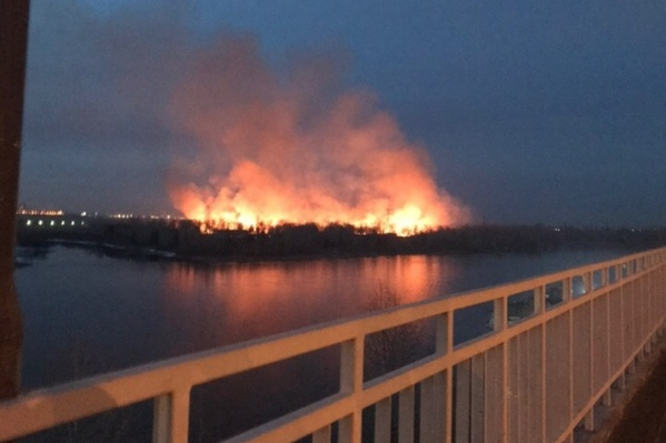 Пожар на острове в Красноярске