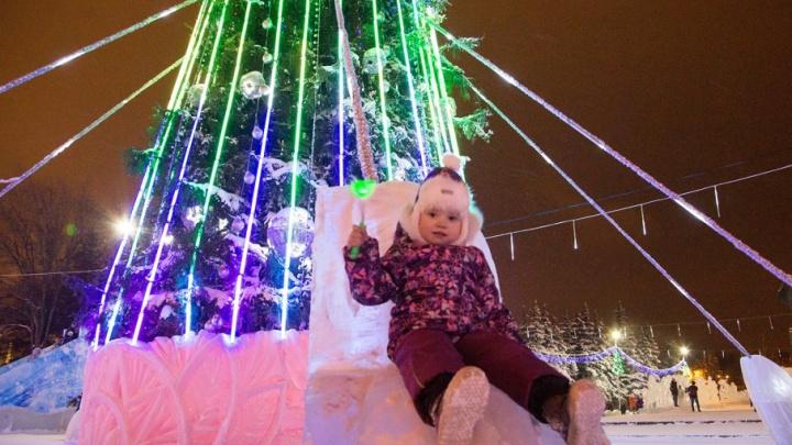 Почем елочка: где и за сколько можно купить новогоднюю красавицу в Уфе