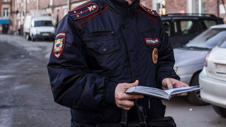 Новосибирские полицейские разыскали пропавшую девочку в красной шапочке