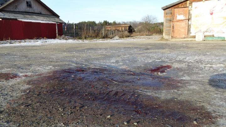 """""""Он протянул мне руку, измазанную кровью"""": жители Кедровки рассказали, как убийца расправился с жертвами"""