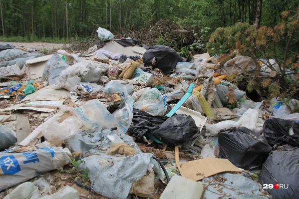 Собранный мусор отвезли на действующий полигон
