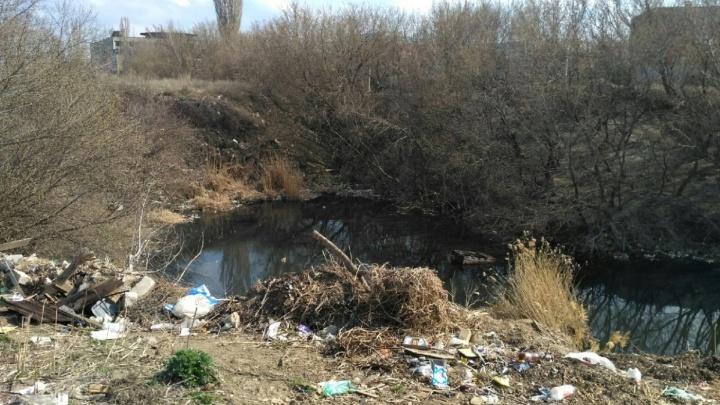 «Концессии» должны прекратить слив: «розовое» озеро в Волгограде продолжает цвести и пахнуть яйцами