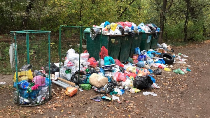 Речные заросли и разбитые арбузы в центре города: показываем самые грязные места Ростова