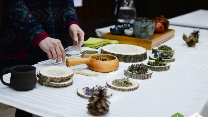 Новосибирцы стали победителями в четырех номинациях международного чайного чемпионата