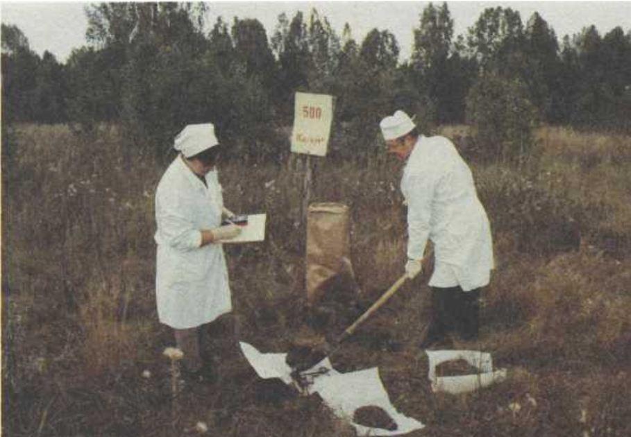 Отбор проб радиоактивной почвы
